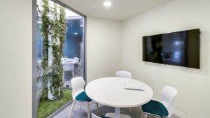 Salle de réunion végétalisée